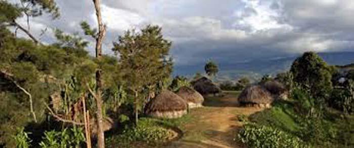 Papua Kemiskinan Pembiaran dan Separatisme